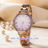 Reloj de señoras modificado para requisitos particulares del acero inoxidable de la aleación del asunto del reloj (WY-G17002B)