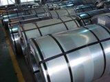 Monsieur SPCC Plaque d'étain métal électrolytique des boîtes de conserve pour l'alimentation Canning