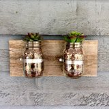 Maurer-Glas-Wand-hängender Pflanzer