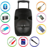 Carro de 12 pulgadas Karaoke profesional activo altavoz Bluetooth