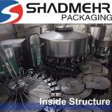Het automatische Invullen van het Flessenspoelen en het Afdekken Machine Fabriek Zhangjiagang