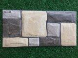 tegel van de Muur van 200*400mm 3D Inkjet Matte Rustieke Buiten Ceramische