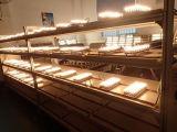 Iluminação com lâmpadas LED de Natal G9 com 3W branco quente