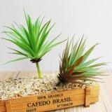 Искусственные растения Succulents зеленого цвета для дизайна