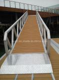 Marina Gangway