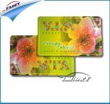 Cartão de /PVC da impressão de cor cheia