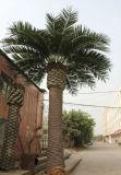 Albero artificiale esterno della palma da datteri della decorazione 18f