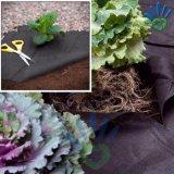 coperchio bianco nero della pianta di agricoltura 50g del tessuto del Nonwoven dei pp