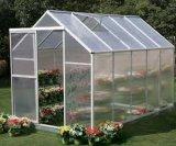 가족 작은 정원 집 꽃 온실을%s 유리제 정원 집