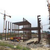 Almacén ligero de la estructura de acero para el Brasil