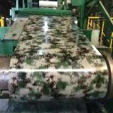 Bobine de modèle en acier de couleur/acier en acier galvanisés plongés chauds fleur de modèle