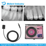 米国歯科X光線イメージ投射システムRvgセンサー