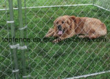 Clôture de chien temporaire 1.2m X 2.3m X 2.3m Taille Dix chien de chien fabriqué en Chine