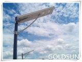 Réverbère solaire Integrated de DEL, lampe de route, constructeur léger de jardin
