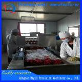 Maquinaria de alimento da maquinaria da pimenta (ir às impurezas, à máquina semeada, ao secador)