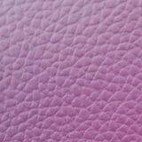 [سغس] دوليّة [غلد مدل] [ز035لثر] نجادة جلد نجادة جلد [بفك] جلد