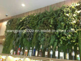 Heiße Verkaufs-Hotel-Gaststätte-immergrüne Blumen-Pflanzenwand