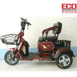 乗客のための余暇および貨物と501A電気三輪車