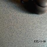 Divers étage de tapis de plancher de vinyle de PVC de couleurs