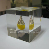 Personnaliser High Transparency Resin Clear Statue Display for Office / Hotel / Home