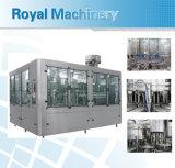 Garantia global 3 em 1 máquina de enchimento automática cheia da água