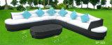 Напольные комплекты софы, мебель ротанга патио, комплекты софы сада (SF-322)