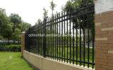 Загородка ковки чугуна черного порошка покрынная гальванизированная стальная для сада/виллы