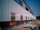 Almacén logístico Pre-Dirigido de la estructura de acero (SSW-199)