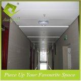 Tegels van het Plafond van de Strook van het Aluminium van de Deklaag 300mmw van het poeder de Decoratieve