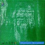 Grünes GROSSHANDELSPET beschichtete gesponnene Plane in Rolls