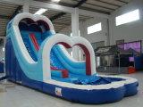 Trasparenza di acqua gonfiabile di Inflatabler della trasparenza dei ponticelli gonfiabili dell'interno giganti delle trasparenze (SL-069)