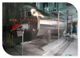 Caldaia automatica del gas naturale di serie di Wns di alta qualità
