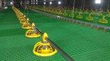 Automatische Geflügelfarm-Geräten-Zufuhr-Wannen-führendes System für Brathühnchen