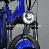 E-Bike покрышки 20inch 48V/20.4ah тучный (RSEB-507)