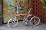 Bicyclette urbaine intelligente d'Eelectric de pouvoir vert de 2017 Pedelec avec le bâti d'aluminium de 20 pouces