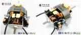 Motor de C.A. do fabricante 110V de China mini para o secador de cabelo