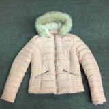 フードの毛皮Sy-1803が付いている防風のピンクレディーパッドを入れられたジャケット