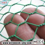 """1/2 """" Groen pvc bedekte Hexagonale Omheining Ploutry voor Konijn met een laag"""