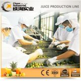 A linha de produção de suco de abacaxi em conserva
