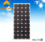 Mini panneau solaire mono puissant chaud de la vente 30W
