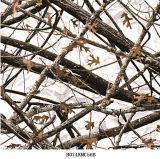 El árbol Wtp de Camo filma la hoja verdadera soluble en agua de las películas B072kmc54b Hydrographics