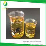 완성되거나 대략 완성되는 스테로이드 기름 대담한 Unde 액체 600mg/Ml BU 근육 또는 Bodybuilding Paypal