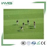 De hete Kleuren van het Gras van het Gras van de Verkoop Anti UV Natuurlijke Synthetische voor Voetbal Filed