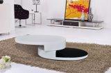 높은 광택 + 베니어 기능적인 MDF 커피용 탁자 거실 가구 (CJ-M059)