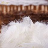 Paso de la prueba de color blanco de 95% mayorista de material de relleno de plumón de pato
