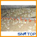 Sinotop volles Set automatisches Geflügelfarm-Gerät für Bratroste