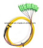 Latiguillo conector de fibra de fibra óptica de paquete de 12 núcleos en forma de espiral Sc/APC G652D LSZH