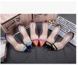 Amende peu profonde aiguë en gros de stylet de proue de rivets de couleur de combat de bouche avec les chaussures simples neuves