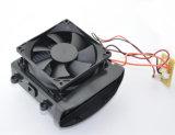 Kundenspezifische Tem Peltier thermoelektrische Kühlvorrichtung mit Kühlkörper Moudule