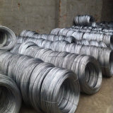 Électro barre de fer clou pour le marché du Kenya